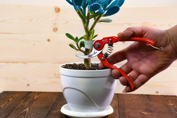 قیچی باغبانی رونیکس مدل RH-3108