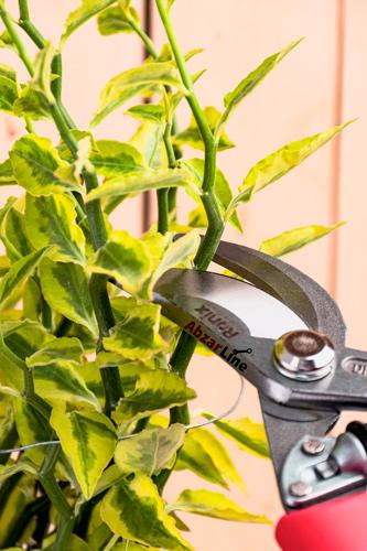 قیچی شاخه زن رونیکس مدل RH-3115